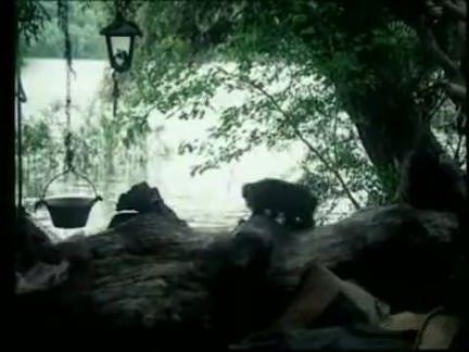 Ретро Порно Tarzan-X позор Джейн 1994 видео